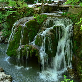 Waterfall Bigar by Neli Dan - Landscapes Waterscapes ( green, waterscape, nature, waterfall, romania )