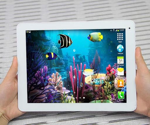 熱帶魚水族館- HD高清版桌布支援平板電腦