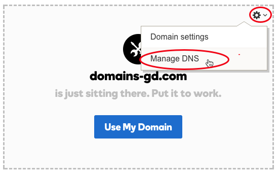 Red circles highlight the gear icon in the top right corner, and the Manage DNS drop-down option.