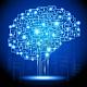 Download Brain Guru Pro For PC Windows and Mac