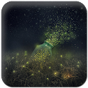 Free Fireflies Live Wallpaper icon