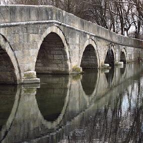 Old roman bridge in Ilidza by Bozidarka Scerbe Haupt - Travel Locations Landmarks ( canon, water, old roman, nature, bridge, landscape, antique )