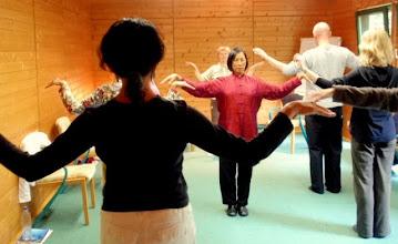 Photo: Wisdom Qigong