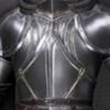 王国の騎士