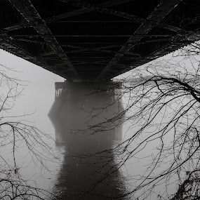 Bridge in the mist by Patrick Provencher - Buildings & Architecture Bridges & Suspended Structures ( fredericton, bridge )