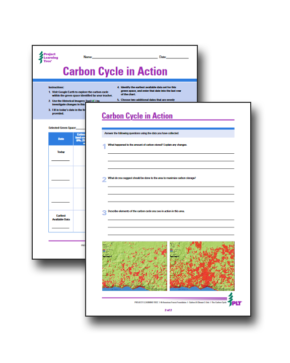 Carbon cycle activity
