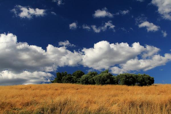 Nuvole estive di Burghy