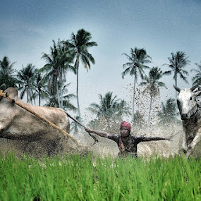 hold the tail by Sapto Nugroho - News & Events World Events ( pacujawi )