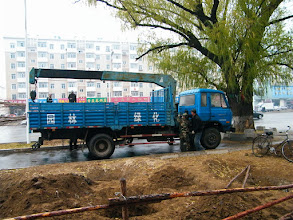 Photo: life and stills in benzrad 朱子卓's blog: winter 2011 stepping in with pure love.here long waited planting trees near QRRS Dorms, eastern Qiqihar after months of preparing in the broadening road operation. a drizzle declared winter 2011 arrives.