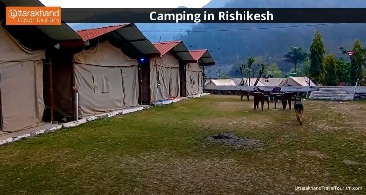 Camping in Rishikesh 2.jpeg