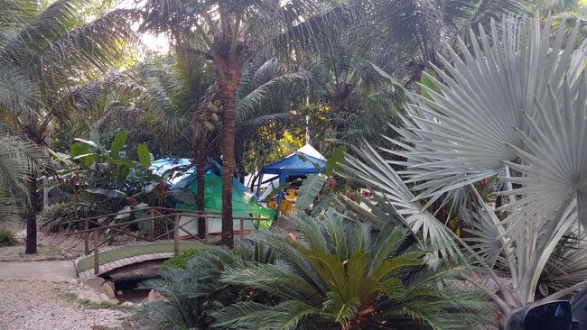 Padang Surf Camping em Itamambuca, Ubatuba 13