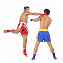 Muay Thai - Basic Techniques icon