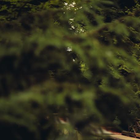 Свадебный фотограф David Tam (matdivad). Фотография от 30.09.2014