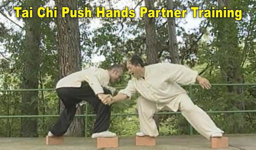 android Tai Chi Pushing Hands Screenshot 1