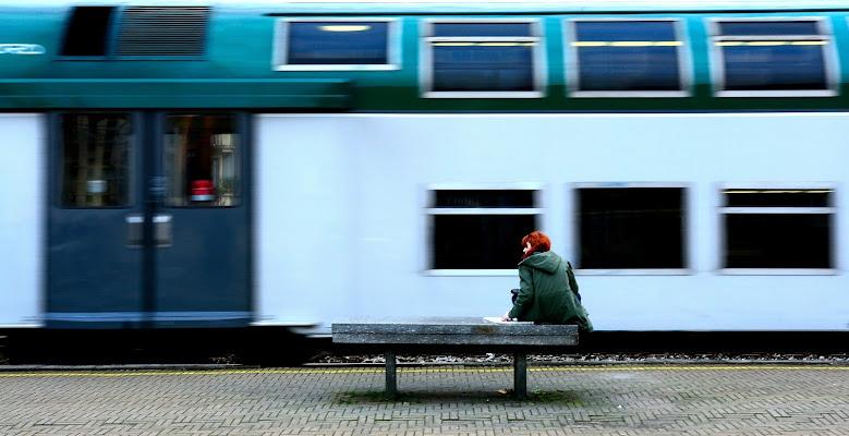 La ragazza del treno di Luca Mandelli