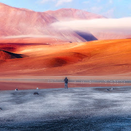 Vision by André Figueiredo - Landscapes Deserts (  )