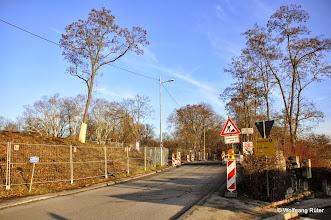 Photo: Nahezu vollständig gerodeter Hang des FFH Rosensteinparks an der Ehmannstraße