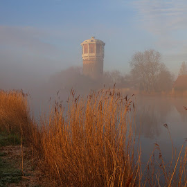 water tower by Fok Vleeshakker - Landscapes Weather ( riet, water tower, holland, tree, weather, water, fog )