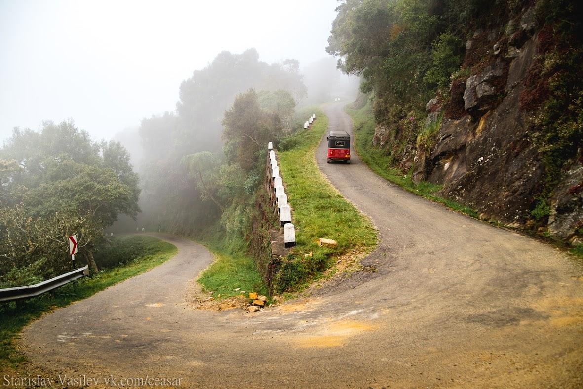 Дорога в Хортон-Плейнс