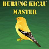 Burung Kicau Master