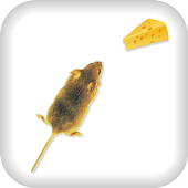 Made Mice for Cheese