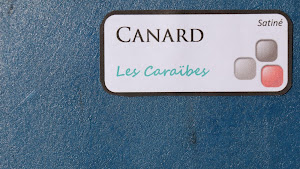 nuancier-les-betons-de-clara-canard-collection-les-caraibes-decoration-interieure-enduit-decoratif.jpg