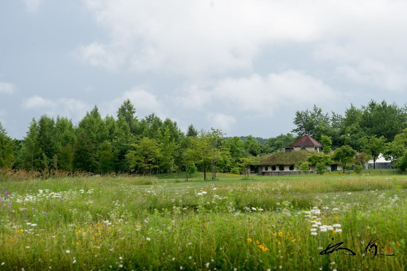 遠くに森のレストラン「天満」を望む風景