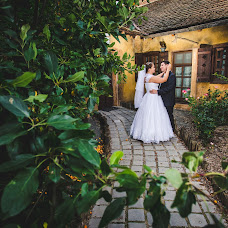 Wedding photographer Tamas Sandor (stamas). Photo of 28.08.2015