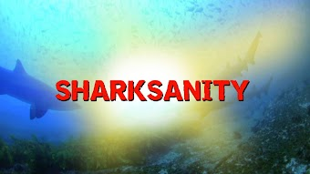 Sharksanity