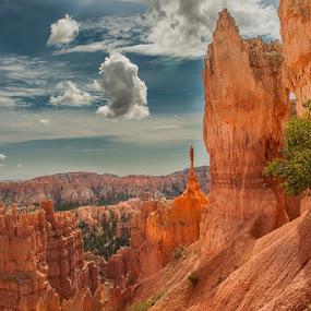 Statue, Bryce canyon by Jocelyne Maucotel - Landscapes Caves & Formations ( mountain, utah, voyage, bryce, landscape, rocks, usa )