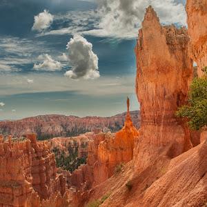 Bryce Canyon-672011.jpg