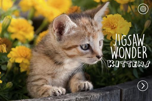 Jigsaw Kittens Puzzle Free