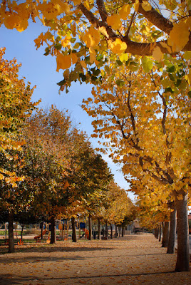 SANTA SUSANNA - Parc Colomer