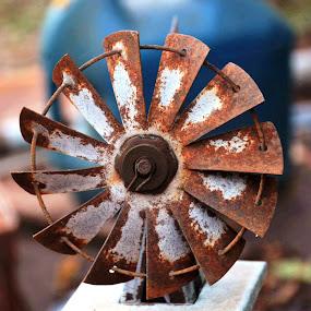 Rusty Fan by Beth Bowman - Artistic Objects Still Life (  )