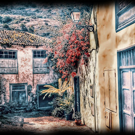 by Betty Taylor - Buildings & Architecture Decaying & Abandoned ( building, abandoned )