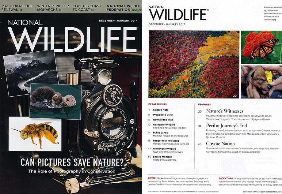 Robert Glenn Ketchum in National Wildlife magazine