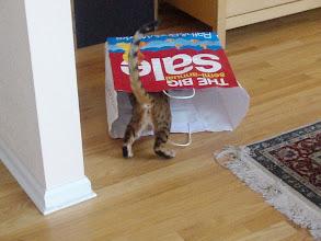 Photo: Vladimir explores a paper bag full of toys.