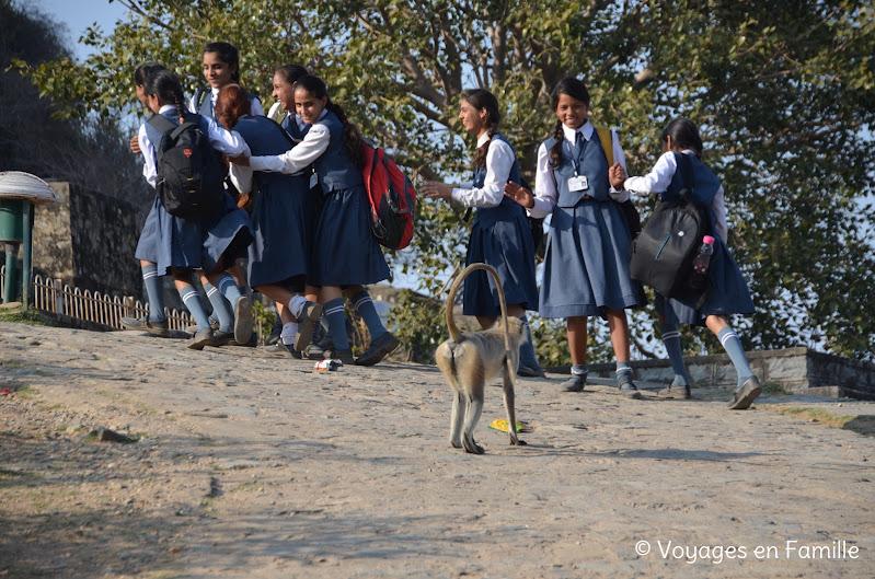 Kumbhalgarh singes