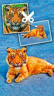 Cut Paste Photo Seamless Edit Screenshot