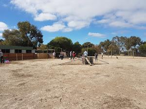 Parque de ocio y atracciones - Animal Farm Goolwa