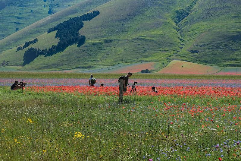 Fotografia,come l'estate ... che passione ! di claudia_colantoni