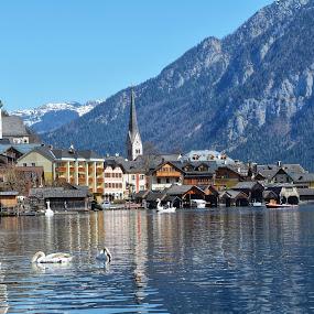 Hallstatt,Austria by Poli Paunova - City,  Street & Park  Neighborhoods ( amazing, view, alps, austria, lake, water )