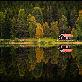 by Morten Johnsrud - Landscapes Forests ( sony, cabin, hedmark, reflection, trees, forest, lake, norway, a200 )