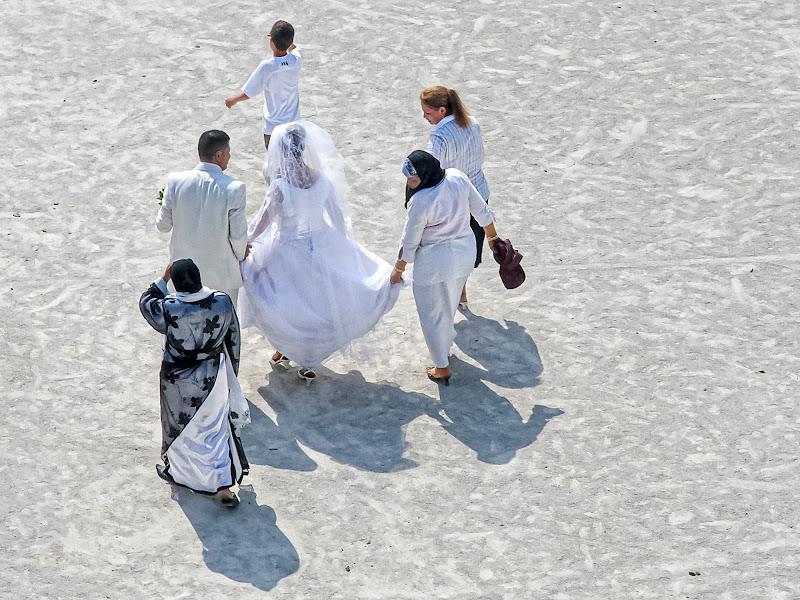 Gli sposi in bianco di Pino Cappellano