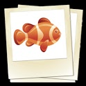 Fishes icon
