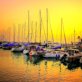 herzliya by Abu  Janjalani Abdullah - Transportation Boats ( boats, transportation )