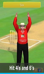 Smashing Cricket – a cricket game like none other 2