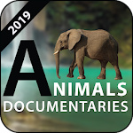 Natural Geographic Animal Documentary 2019 1.2