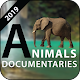 Download Natural Geographic Animal Documentary 2019 For PC Windows and Mac