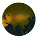 Age of Civilizations Asia (game)
